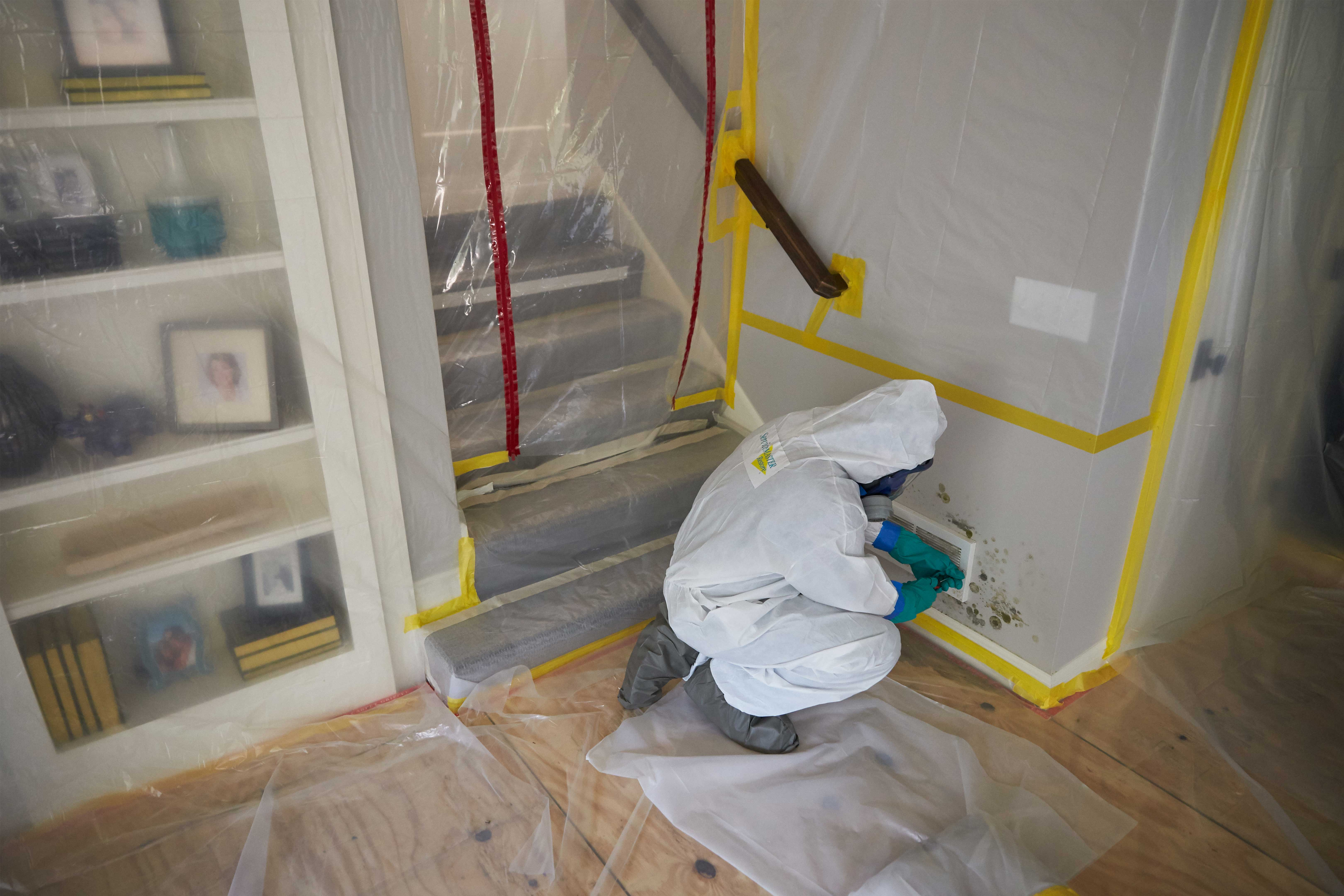 image of equipment used to remove mold from a home